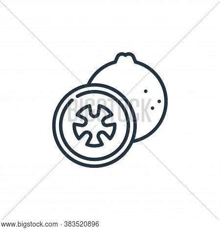 guava icon isolated on white background from cinco de mayo collection. guava icon trendy and modern