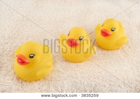 three child's rubber duck on top of towel ready for bath time poster
