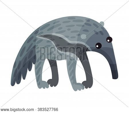 Aardvark With Long Snout As African Animal Vector Illustration
