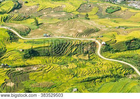 Laocai Vietnam Vietnam Paddy fields, terraced culture, Sapa, Vietnam