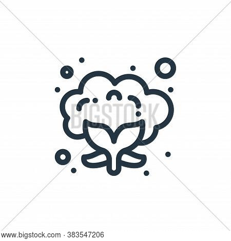 cauliflower icon isolated on white background from food collection. cauliflower icon trendy and mode