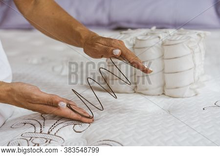 Mattress Spring In The Hands Of A Woman. Pocket Independent Spring. The Concept Of Filling A Mattres