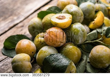 Ripe  Yellow  Plum Fruits Harvested In Fall As Background Texture. Macro Photo Food Fruit Plums. Tex