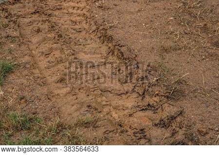Small Bulldozer Tracks In The Muddy Clay Soil Leaving A Imprint In The Ground At A Construction Site