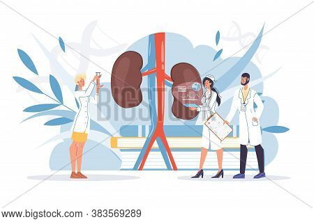 Human Kidneys Inspection, Inner Organ Disease Treatment. Pharmacy Research System, Educational Physi
