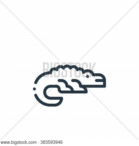 crocodile icon isolated on white background from fabric features collection. crocodile icon trendy a