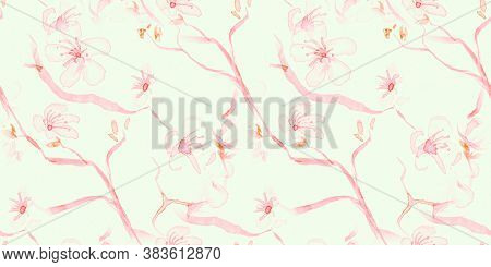 Watercolour Cherry Blossom. Seamless Rose Ornament. Asian Petal Drawing. White Modern Spring Pattern