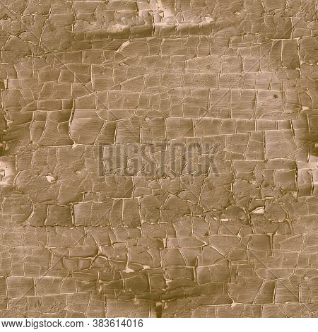 Brown Crackle Paint. Worn Marble Texture. Antique Old Frame. Nature Tree Background. Crackle Paint.