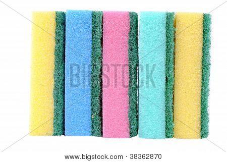 colorful sponge