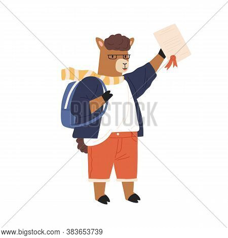 Animalistic Childish Character Or Lama Cub Student Hold And Demonstrate School Graduation Diploma. S