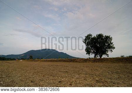 Dry Soil In Land At Bukit Mertajam.