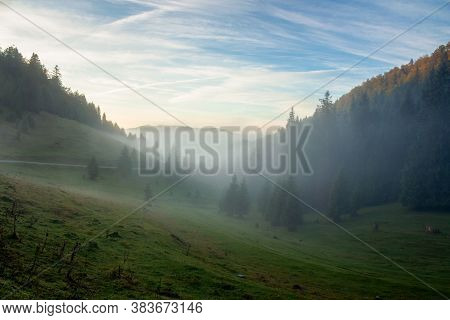 Morning Mist In Apuseni Natural Park. Valley Full Of Fog At Dawn. Beautiful Landscape Of Romania Mou