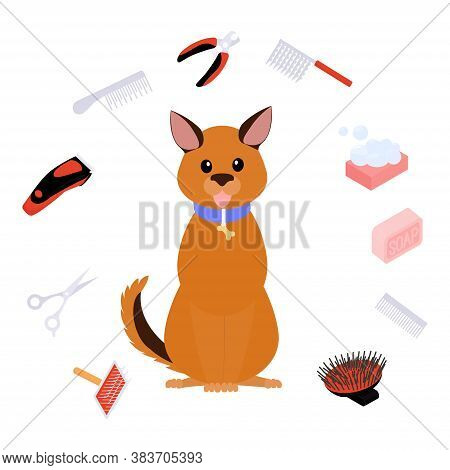 Grooming Dog Illustration, Pet Hair Care. Animal Beauty Spa Salon Vector Concept. Pet Grooming Equip