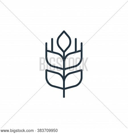 wheat icon isolated on white background from bakery collection. wheat icon trendy and modern wheat s