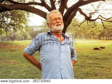 Senior Man Stands Back Pain In The Park, Back Pain In The Elderly, Health Care