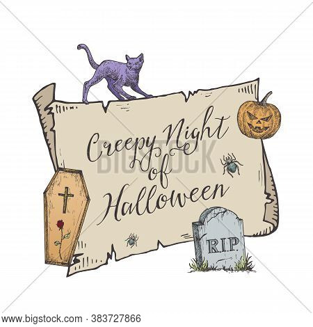 Happy Halloween Trick Or Treat Vector Banner Template. Hand Drawn Scroll Paper Background, Coffin, C