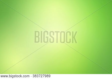 Green Natural Gradient Background, Abstract Green Blurred Background With Bright Sunlight.