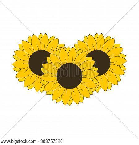 3 Sunflowers For Banned Design Or Decoration Vector Illustration
