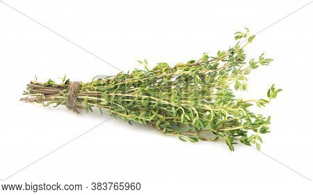 Green Thyme Bunch An Isolated On White Background