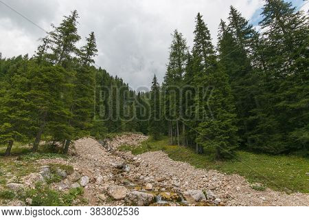 View Of Mountain Stream In Val Venegia During Summer Day, Trentino Alto-adige, Italyview Of Mountain