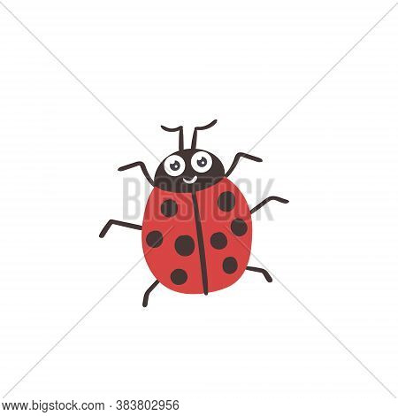 Vector Cartoon Insect Ladybug Red Black Forest Animal