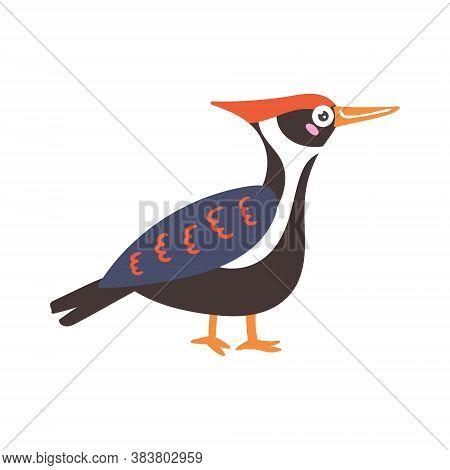 Cartoon Vector Bird Black Woodpecker Forest Animal