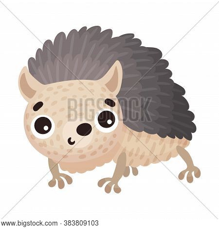 Cute Hedgehog With Prickles As Forest Animal Vector Illustration