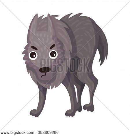 Grey Wolf As Carnivore Forest Animal Vector Illustration