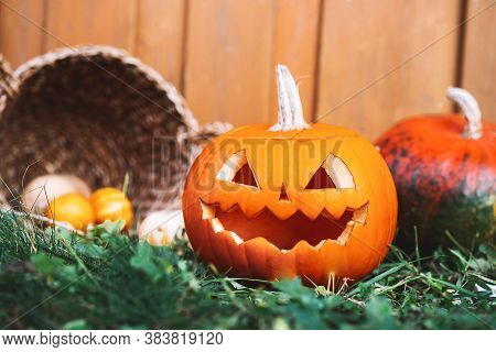 Preparation For Halloween, Autumn Decor Outside Of House, Closeup.  Halloween Pumpkin Head Jack Lant
