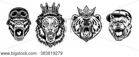 Animal Angry Characters Set. Gorilla In Biker Helmet, Lion And Bear In Riyal Monarch Crown, Bulldog