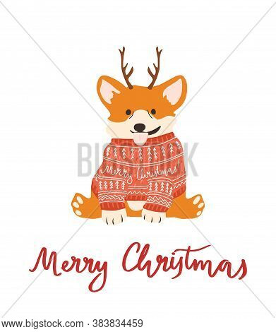 Vector Cute Corgi In Ugly Sweater And Antlers For Christmas Postcard. Isolated.