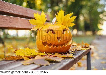 Halloween Concept. Orange Pumpkin For Halloween On A Bench Outside.