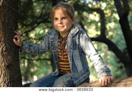 Little Girl Sitting On The Tree