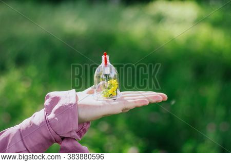The Girl Holds A Jar For A Hijama And A Flower In Her Hands. Yellow Flowers. Hijama, Bloodletting, T