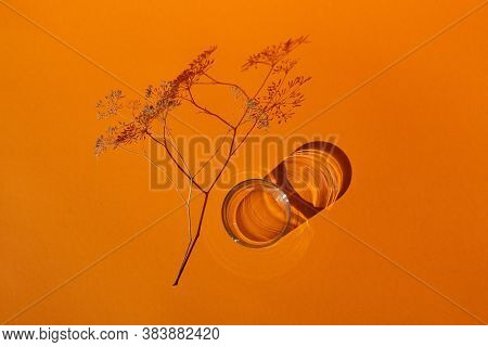 A Beautiful Sprig Of Dry Grass On A Bright Sunny Day On A Bright Brilliant Orange Background, An Emp