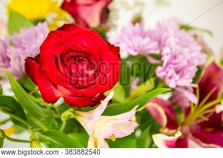 Beautiful Red Rose Flower Over A Bouquet Of Colorful Flowers, Great Background Image For Your Next P