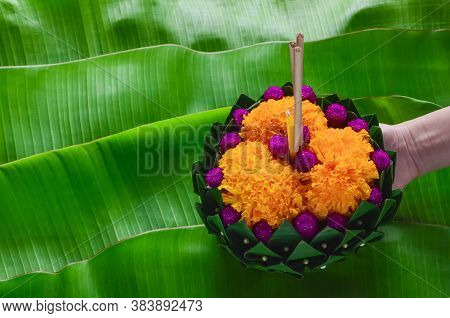 Hand Holding Banana Leaf Krathong That Have 3 Incense Sticks And Candle Decorates With Flowers For T