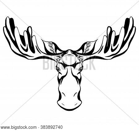 Contour Black Silhouette Of A Moose Head With Antlers Front View With Hatching. Wild Mammal. Vector