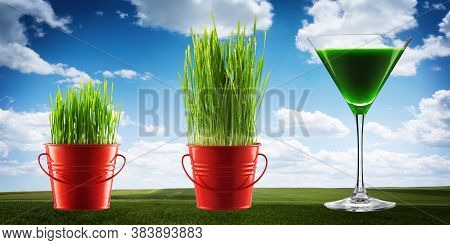 Wheat, Green Grass Juice Over Spring Background. Healthy And Organic Morning Drink. Detox, Fitness A