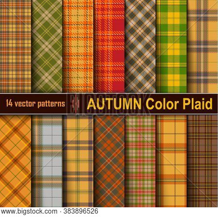 Autumn  Set  Tartan Seamless Pattern Background.
