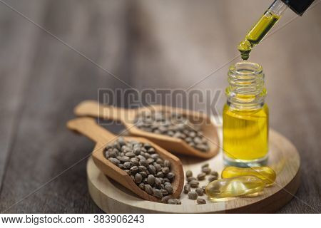 Hemp Seeds And Hemp Oil On Wooden Table. Hemp Seeds In Wooden Spoon And Hemp Essential Oil In Small