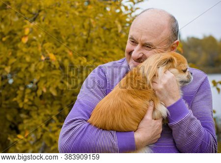 Senior Man On Retired, Dog Lover With His Red Pekingese Pet On A Walk At Park. Concept Love And Care