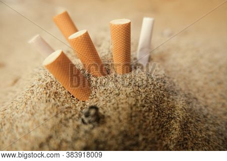 Isolated Used Cigarette Butts Discarded On Sandy Sea Beach, Ecosystem Habitat Pollution
