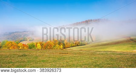 Autumn Landscape In Morning Mist. Beautiful Scenery With Colorful Forest On The Grassy Hills. Sunny