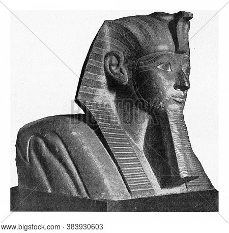 Head of a sphinx with the facial features of Queen Hatshepsut, From the Universe and Humanity, 1910.
