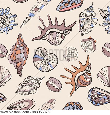 Vector Pattern With Seashells On A Light Background. Sketch Style Seashells With Color. Background F
