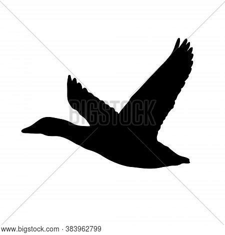Duck In Flight Icon, Mallard Flying, Vector Illustration Design