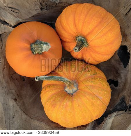 Topview, Three Orange Pumpkins, Concept Autumn Vegetables For Soups And Side Dishes