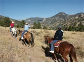 Mountain trail ride on horseback in Colorado poster
