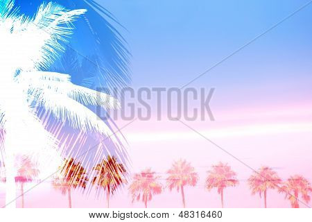 Tropical Palm Trees Row